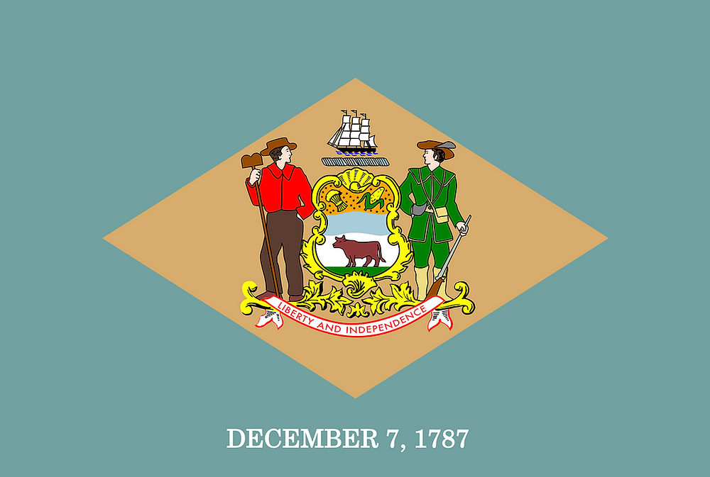 Delaware State flag.