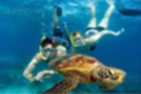 Snorkeling-with-Turtle-in-Seychelles.jpg