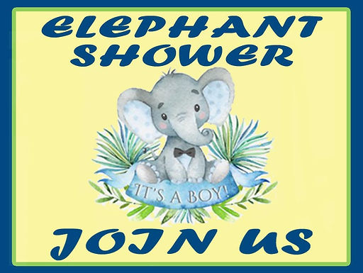 Elephant Baby Shower on the Reserve