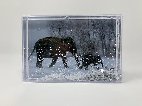 Special Edition EAF Snow Globe Frame
