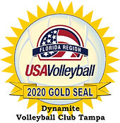 Dynamite Volleyball Club Tampa Gold Seal
