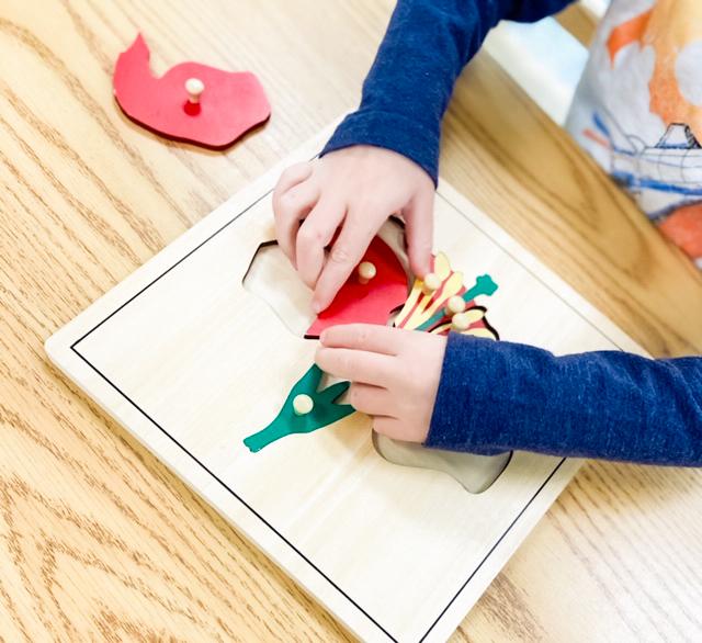 Montessori Puzzle