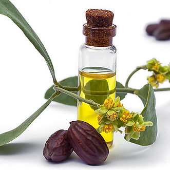 jojoba_ingredient.jpg