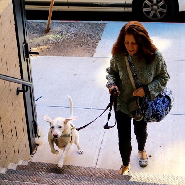 Daisie walking into school.jpg