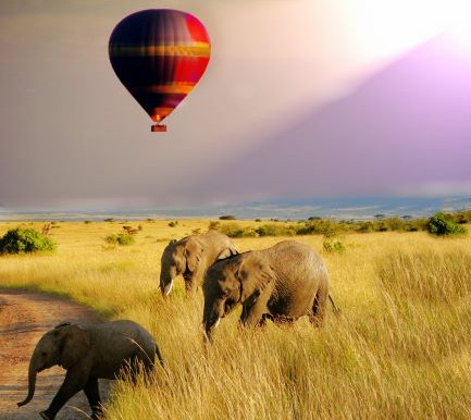 Ten Reasons to Book with African Travel Agents