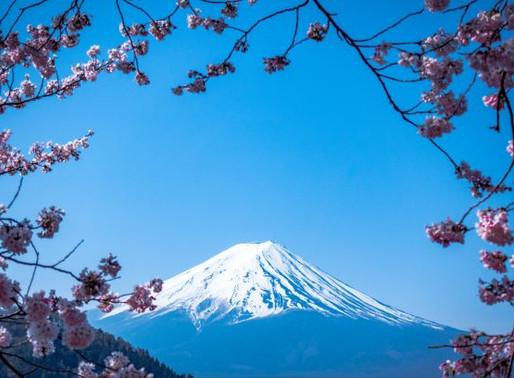 Top 15 Attractions in Tokyo
