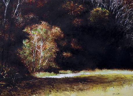Autumn Light painting by John Wilkison