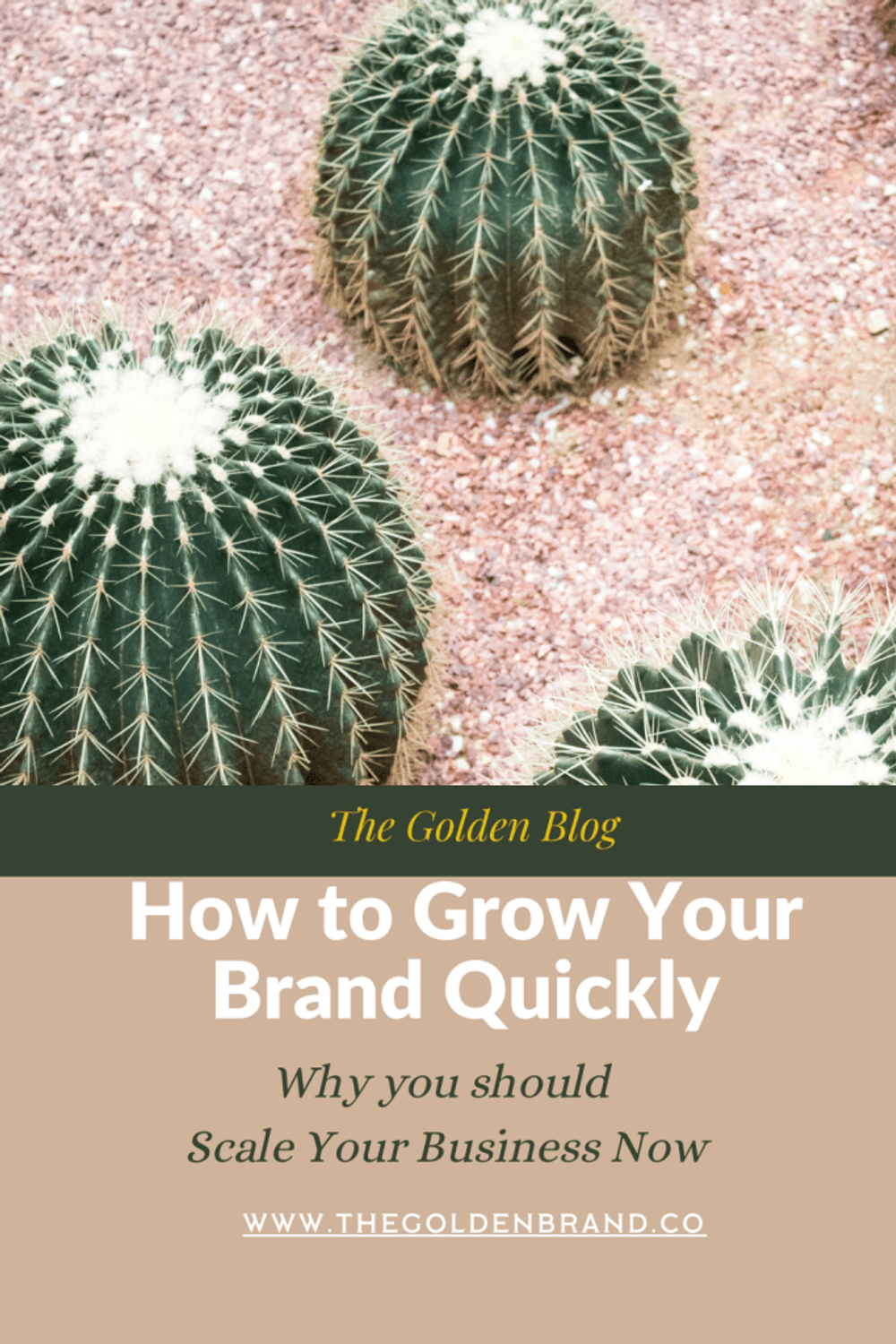 Grow your brand quickly