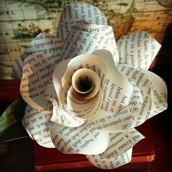 Jane Eyre Paper Rose
