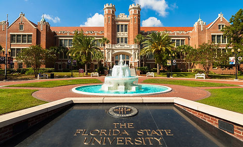 Standard_Florida-State-University1.jpg