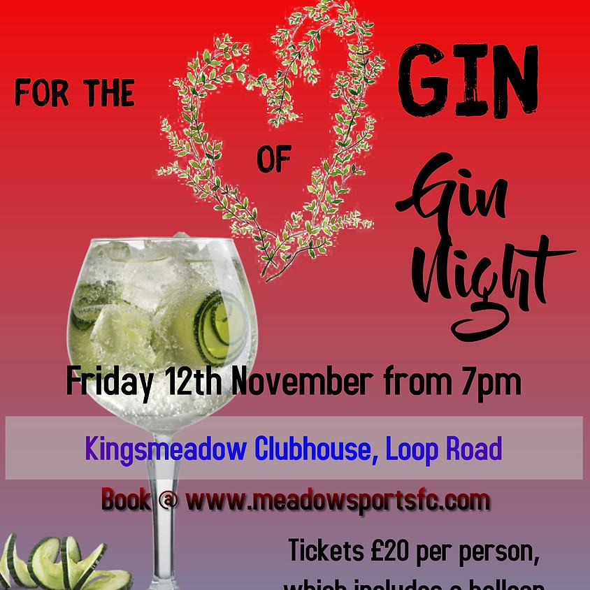 Gin Night - Friday 12th of November