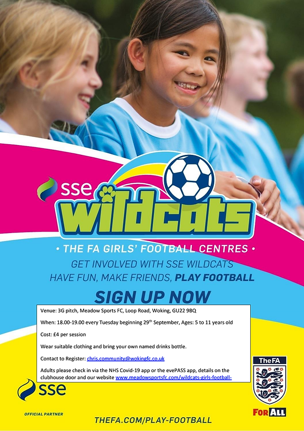 Wildcats poster September 2020 photo.png