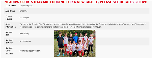 U14 Sports goalie required.png