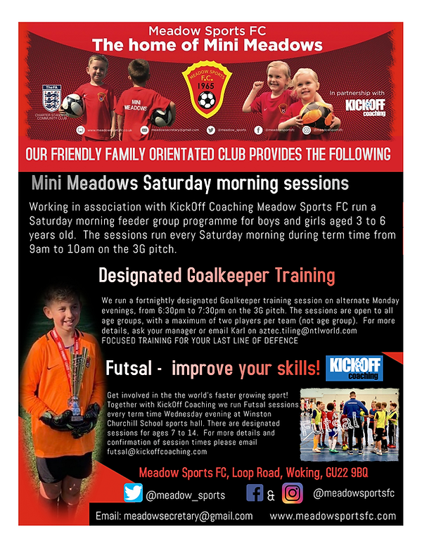 Meadow flyer back page.png