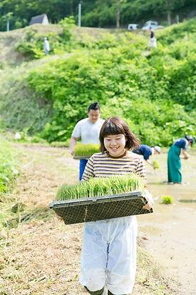 Noriko Yoneyama_taue2016_056.jpg