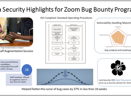 Luta Security Highlights for Zoom Bug Bounty Programs