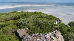 Isla Pasion