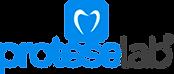 logo-proteselab-suporte.png