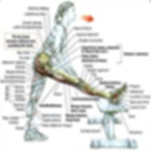 Personal Trainer en Valencia, Adelgazar en forma, fitness, atletismo, pilates, core, cardio