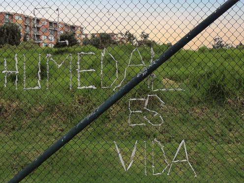 Las tejedoras que luchan por salvar los humedales de Bogotá