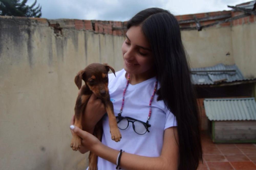 Foto: tomada de Adopción animal:
