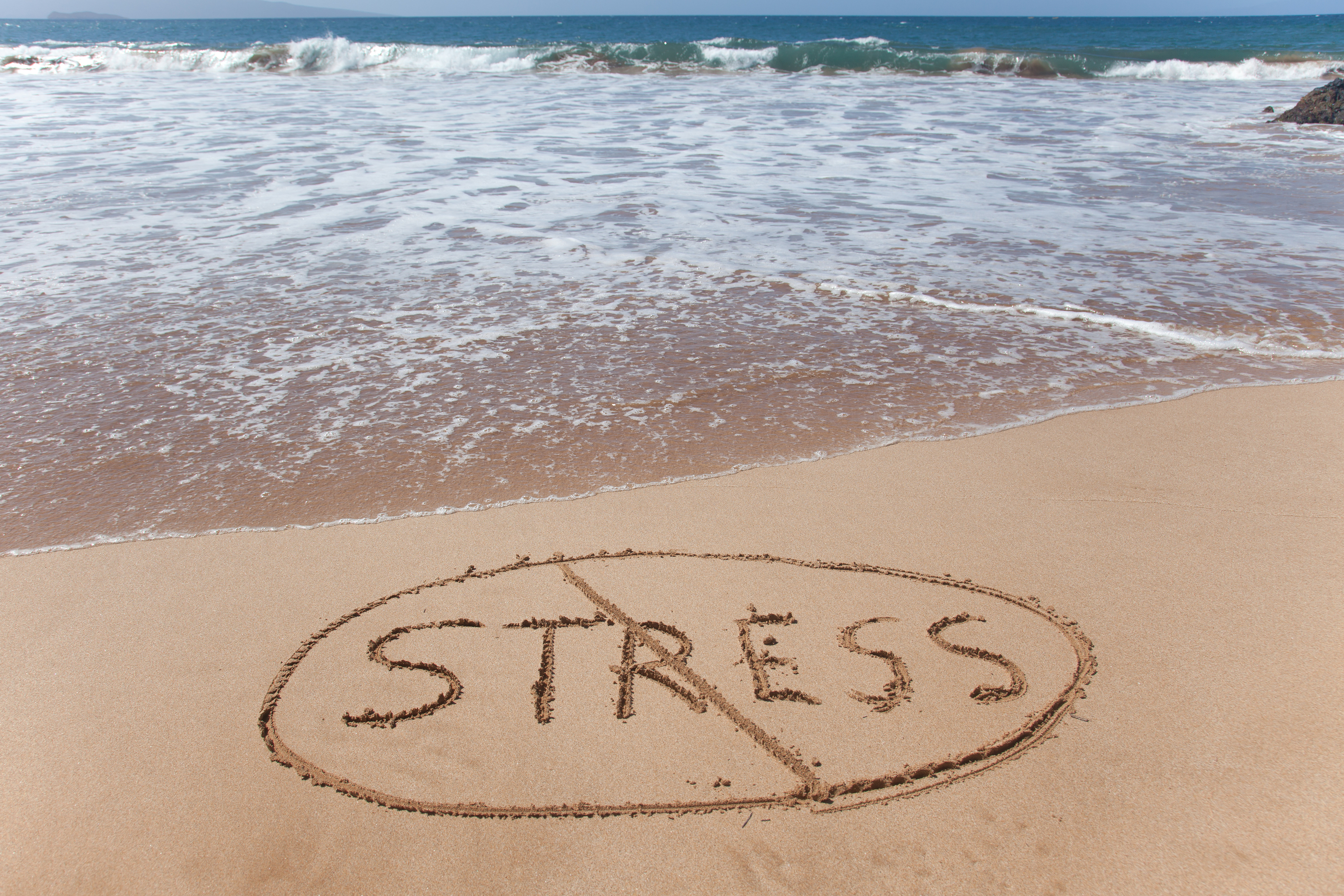 스트레스장애