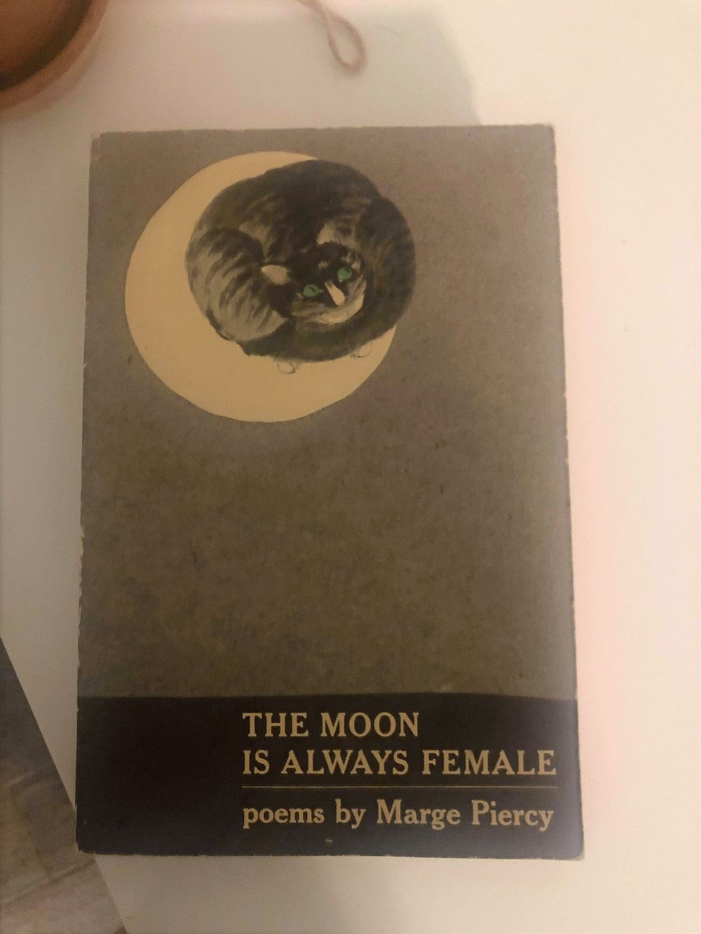 Book The Moon is Always Female
