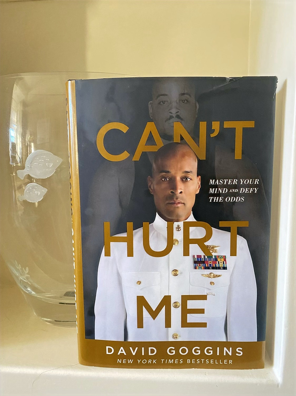 Book Can't Hurt Me by David Goggins