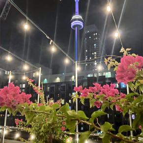 Victor Restaurant Toronto