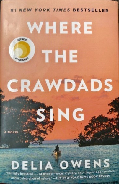 Wonder what to read? Book Review: Where the Crawdads Sing