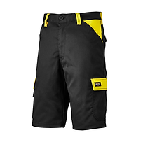 Dickies Everyday Shorts.png