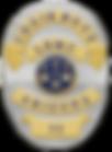AA Badge.png