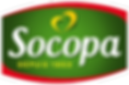 logo-socopa.png