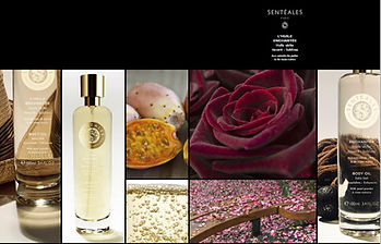 HUILE ENCHANTEE 7 ROSE BLACK BACC.JPG