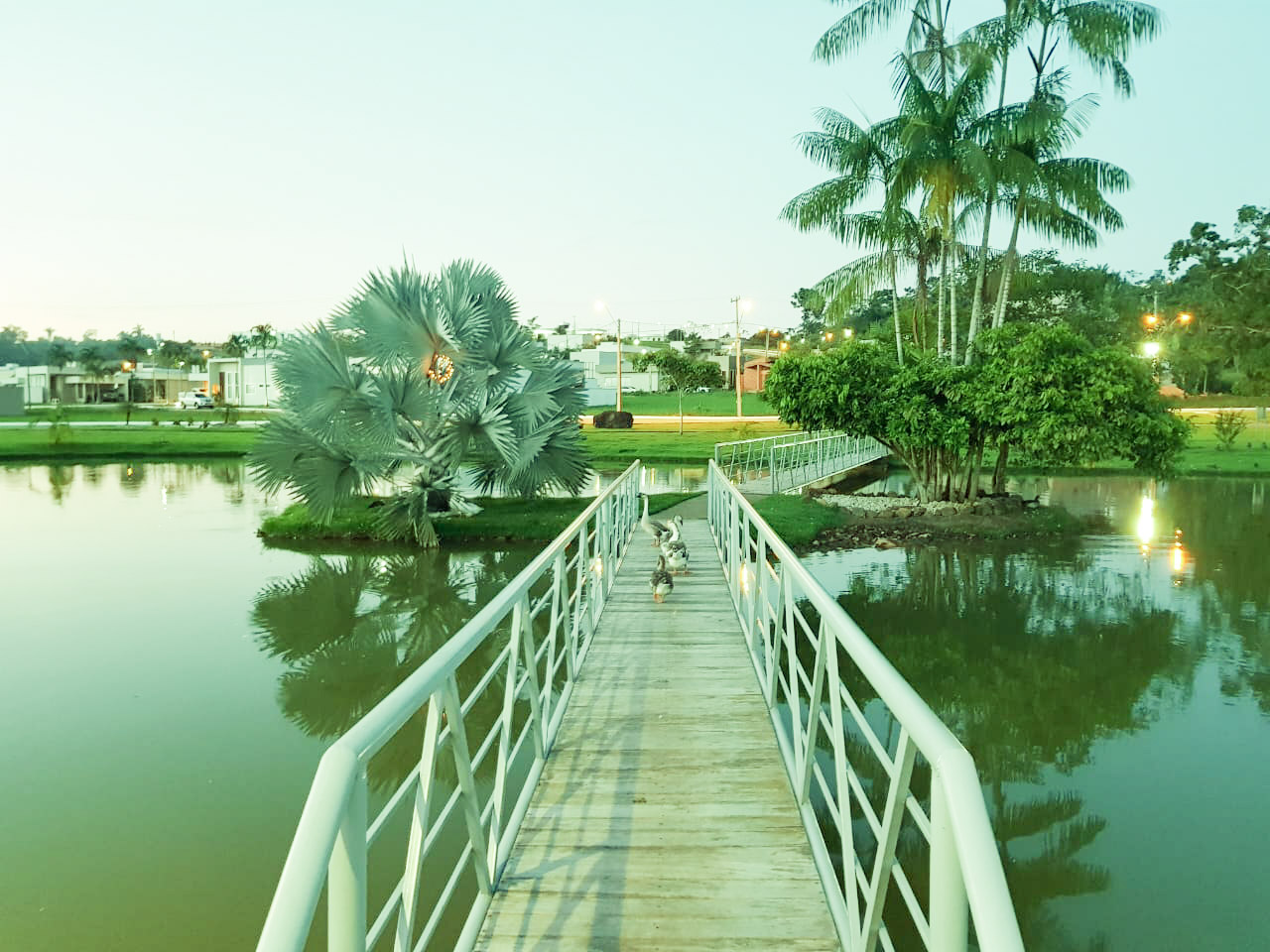 ponte vale
