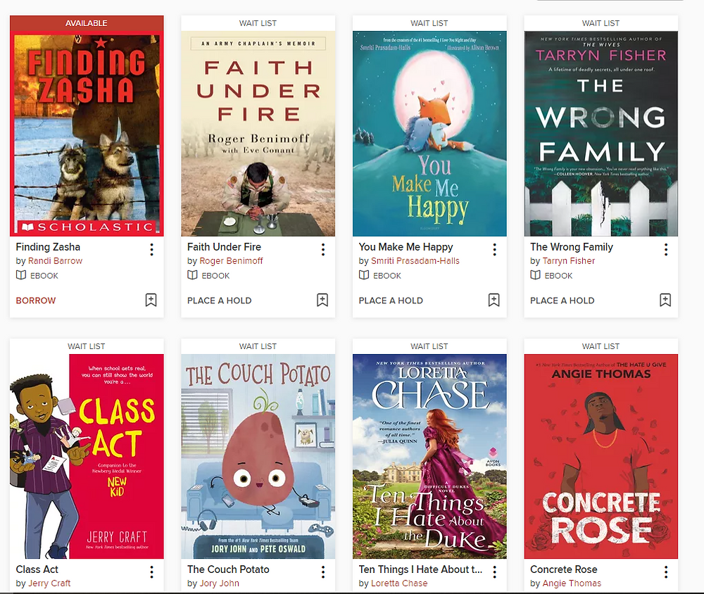 image of current ebooks available for checkout