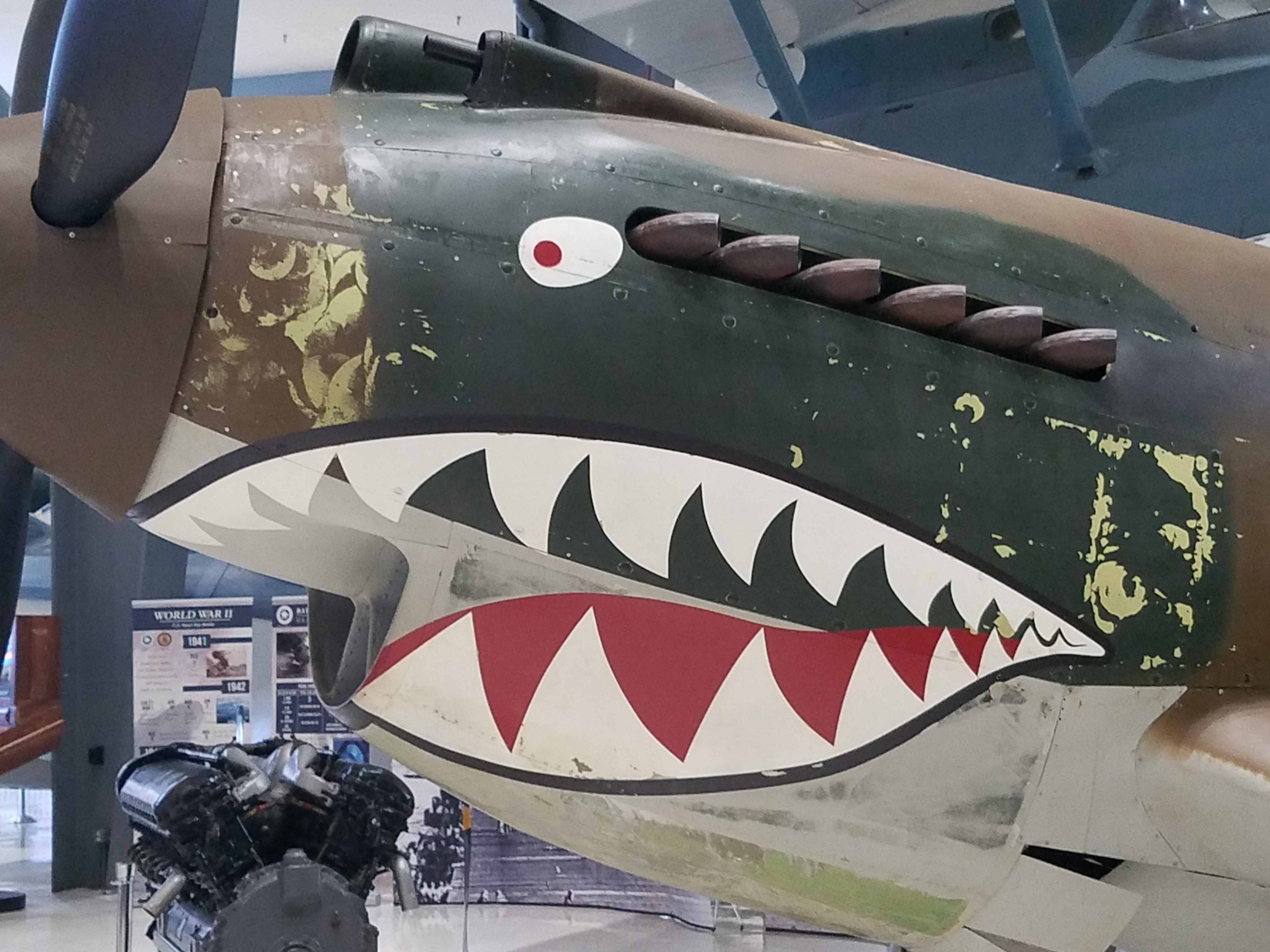 WWII Fighting Tiger Airplane