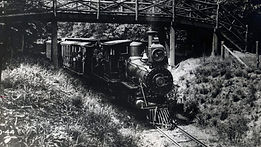 Coleman's Two-Foot Railway in Mount Gretna picture - LebTown.jpg