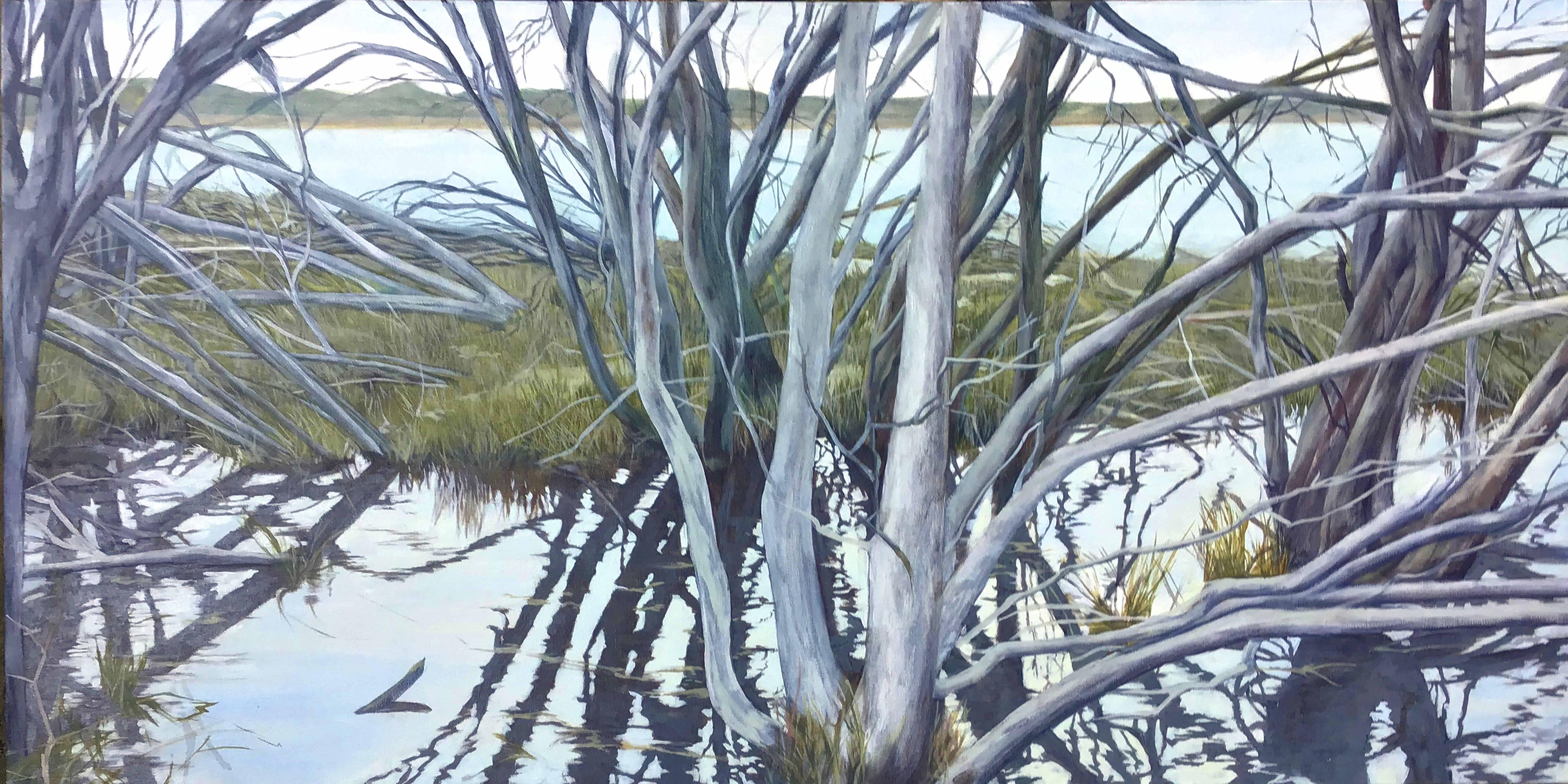 Kangaroo Island wetland
