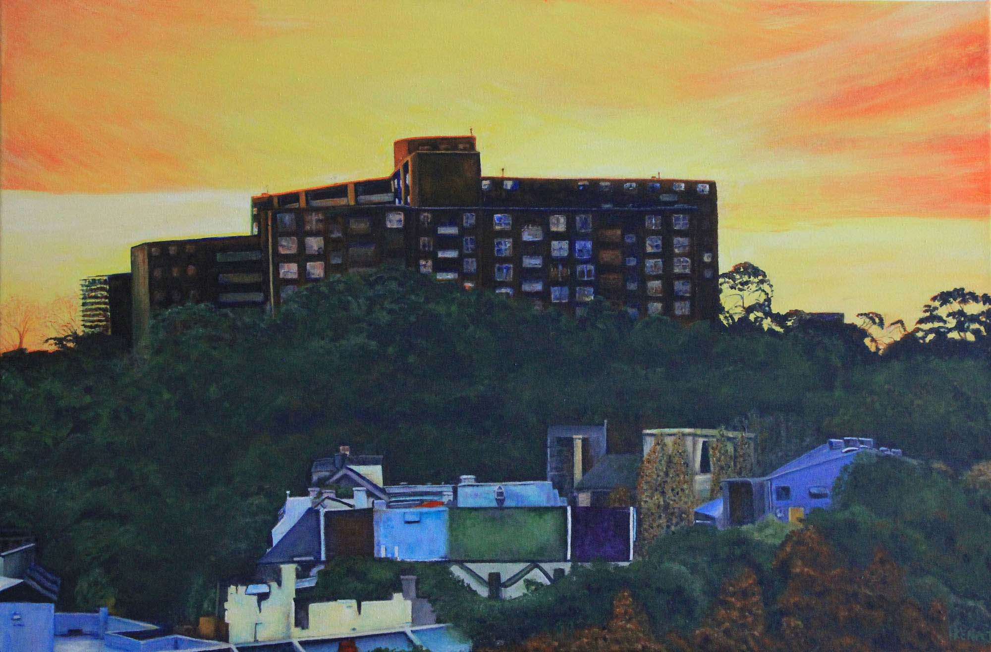 Sundown over Northcott, Surry Hills & Valleys