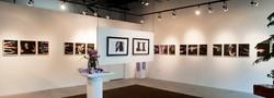 """Con Form"" B.F.A. Senior Exhibit by"