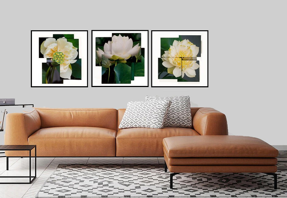 Lotus composite-1.jpg
