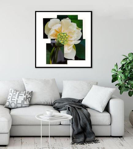 """Virtious Lotus"" in-situ"