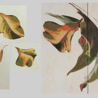 installation falling magnolia leaves