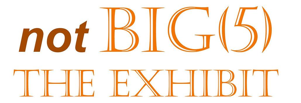 Rezny Gallery_notBIG5 Exhibit_edited.jpg