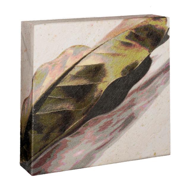 "05.Magnolia leaf with shadow-wrapped6""X6""X2"""