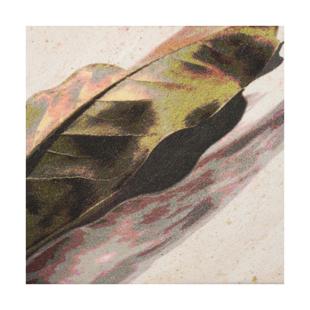 "05.	Magnolia leaf with shadow-wrapped	6""X6""X2"""