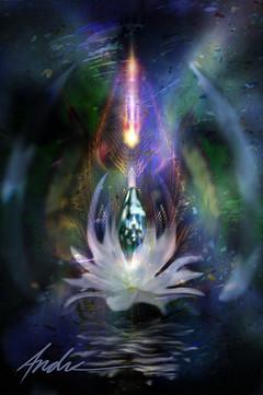 DD_00524-The Lotus Crystal.jpg