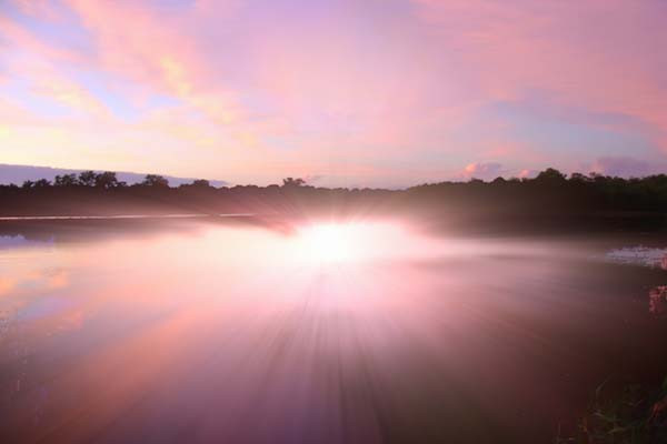 ApparitionInTwilight.jpg