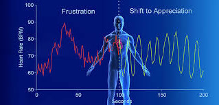 How does biofeedback help in reducing stress.